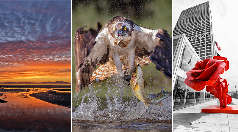 Ayr Photographic Society 2018 Annual Print Exhibition